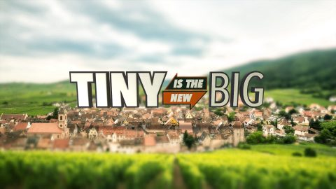 TINY IS THE NEW BIG - OPEN LOGO